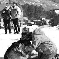 Я люблю свою собачку) :: Ольга Горковенко