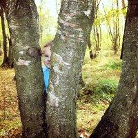 Ку-ку, мой мальчик! :: Ольга (Кошкотень) Медведева
