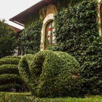 English garden :: Юлия Выгонская