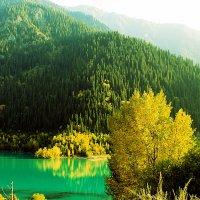 Иссыкское озеро, Алматинская область :: Julia Martinkova