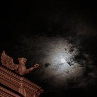 лунная ночь :: Дарья Янковская