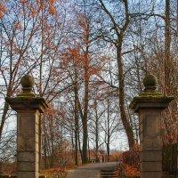 Осень в городе :: Waldemar .