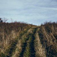 road :: Марк Додонов