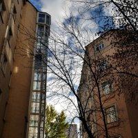 Московский дворик :: Наталья Rosenwasser