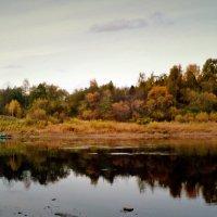 река Юг , окрестности Подосиновца :: ВладиМер