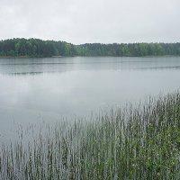 Живописное Святое Покровское озеро :: Елена Смолова