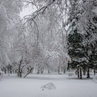 Снегопад :: Вера