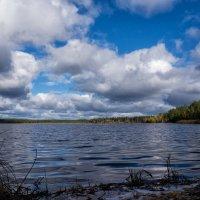 Озеро Лунево :: Андрей Трифанов