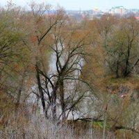 Вид с высокого берега реки Орлик. :: Борис Митрохин