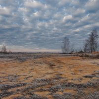 перед зимой :: sergej-smv