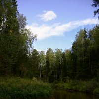 Суровые Сибирские реки :: Анна Куценко