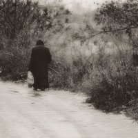 Одиночество.... :: leonid