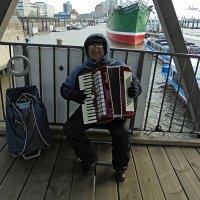 Музыкант в порту :: Nina Yudicheva