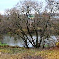 На берегу реки Орлик. :: Борис Митрохин