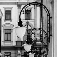 В строю :: Елена Николаева