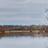 Осенняя  рыбалка. :: Валера39 Василевский.