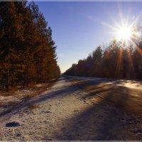 Дороги Сибири.Ноябрь :: Владимир Холодный