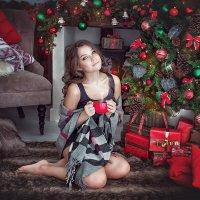 Новогодняя :: antoshina_ t