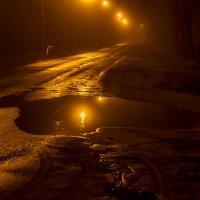 Ночная лужа и фонари. :: Анатолий. Chesnavik.