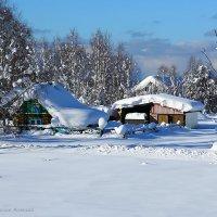 Сибирская зима... :: Алексей Белик