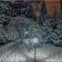 Вечерний снегопад. :: Олег Каплун