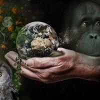 «Наш дом - Земля ...» :: vitalsi Зайцев