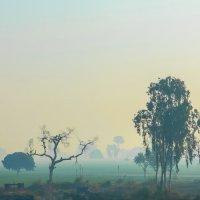 Индия типичный среднеиндийский пейзаж :: юрий макаров