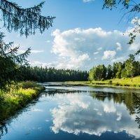 летнее озеро :: Мария Корнилова