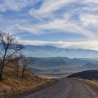 Путь домой :: Сергей Рычков