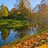 красавица осень :: Елена