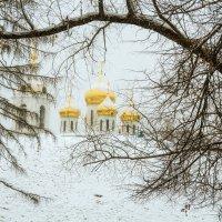 Успенский собор за пеленой снега. :: Анатолий. Chesnavik.