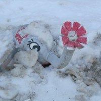 зима и слоник :: tgtyjdrf