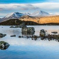 Scotland :: Aleksandr Papkov