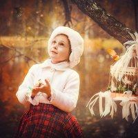 Осенняя сказка для Лизоньки про маленькую птичку :: Фотохудожник Наталья Смирнова