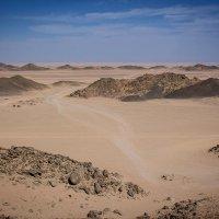 Аравийская пустыня. :: Надежда