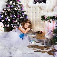 новогодняя ночь :: Любовь Лебедева