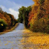 Дорога в Молдавию. :: НАТАЛЬЯ КРИВОКОЛИНСКАЯ