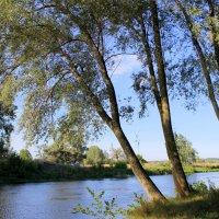 Река всесильна, как судьба. :: Валентина ツ ღ✿ღ