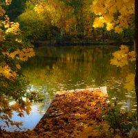 Золотая осень :: Вера