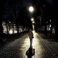 Аллея сумрака и света :: Александр Скибицкий