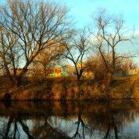 Глубокая осень маленькой речки :: Анатолий