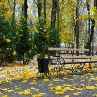 Осенний наряд :: Милешкин Владимир Алексеевич