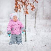 Первый снежок! :: Юлия Зубкова