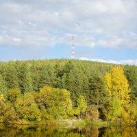 Золотая осень :: Сергей Григорьев
