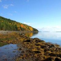 Осенний залив :: Сергей Григорьев