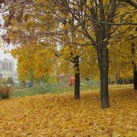 Осенний этюд2. :: Александр Атаулин