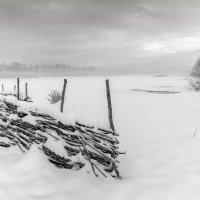И выпал снег  ЧБ :: Евгений Герасименко