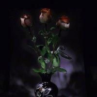 Розы в вазе :: Дмитрий Кузнецов