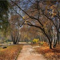Не спеша, и листьями шурша, гуляла в парке осень. :: Алла Allasa