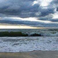 Nature Photo. Балтийское море. :: Murat Bukaev